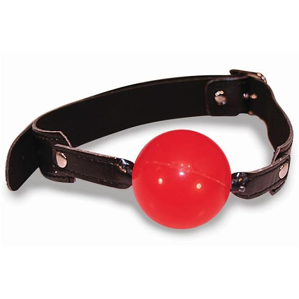 S&M Red Ballgag